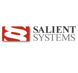 Salient Systems Logo